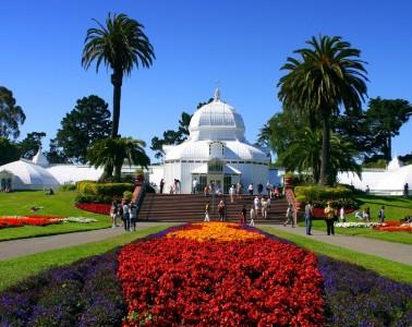 Photo of a garden area at Golden Gate Park in San Francisco