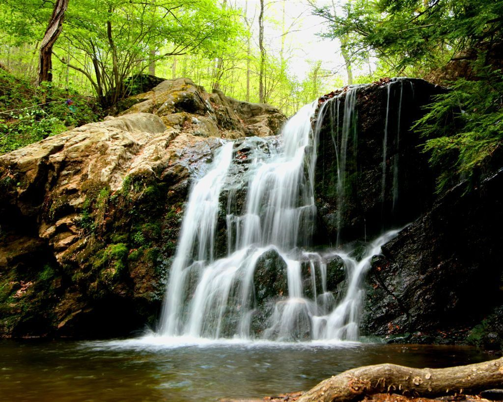 Waterfalls in lush part of Cascade Falls Trail in Patapsco Valley State Park, Baltimore.
