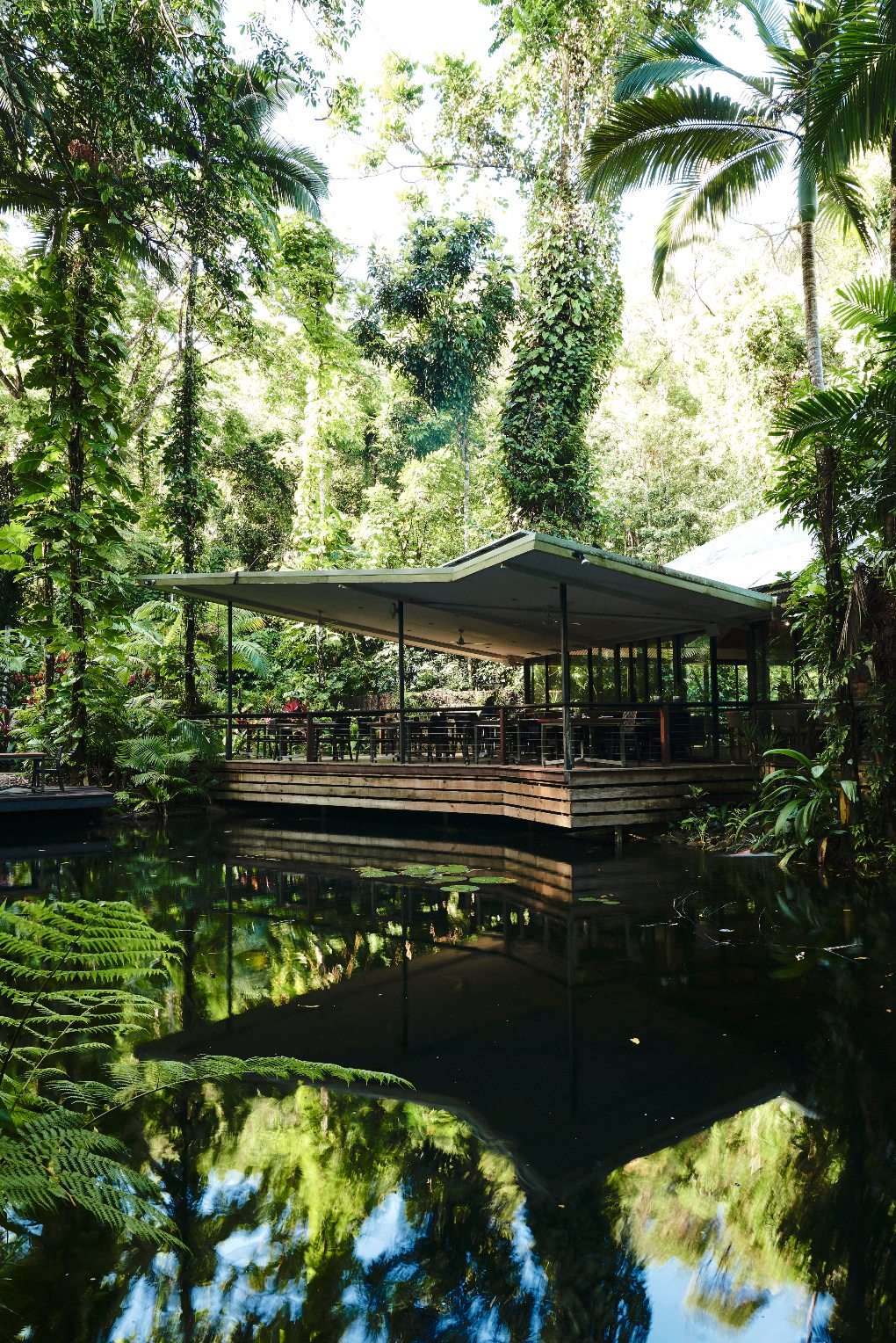 View of pond and outdoor seating area of nice restaurant in rainforest.