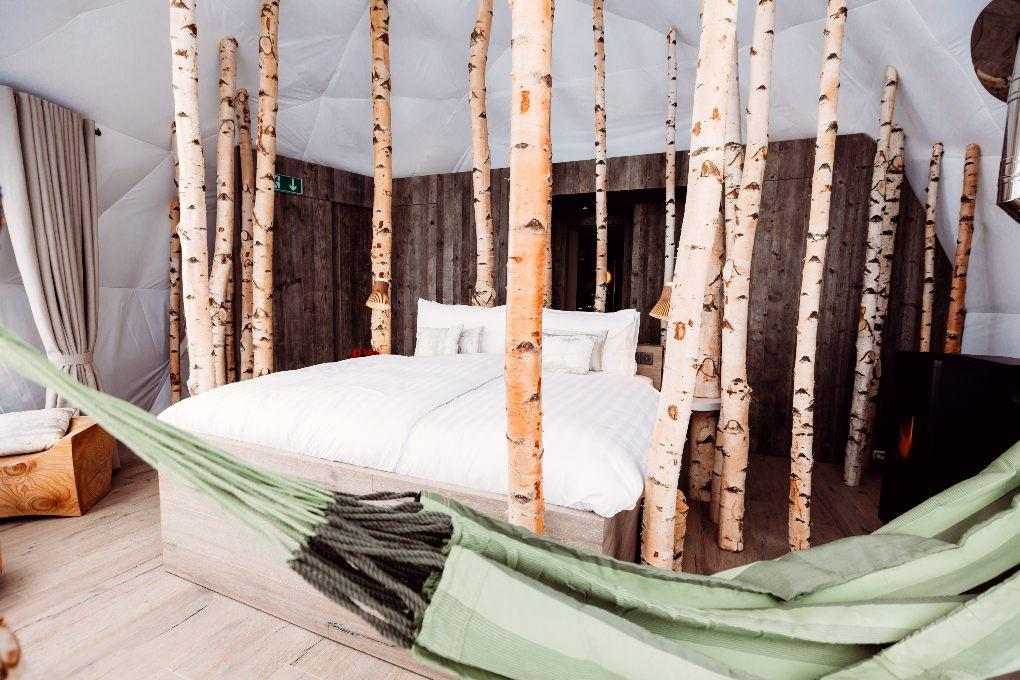 Trees surround white queen bed with green hammock in close view.