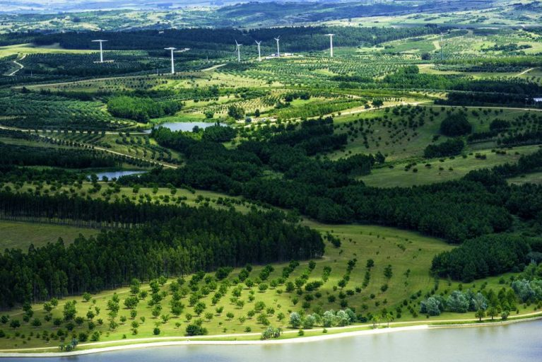 The lush Uruguayan region of Garzón filled with high-technology agricultural, livestock businesses, and of course, wind turbines.