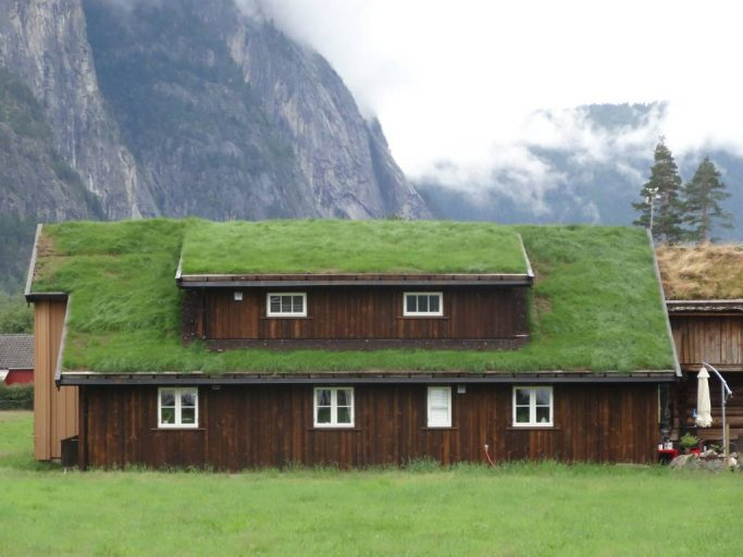 Green grass roof of cottage in village of Rysstad in southern Norway.