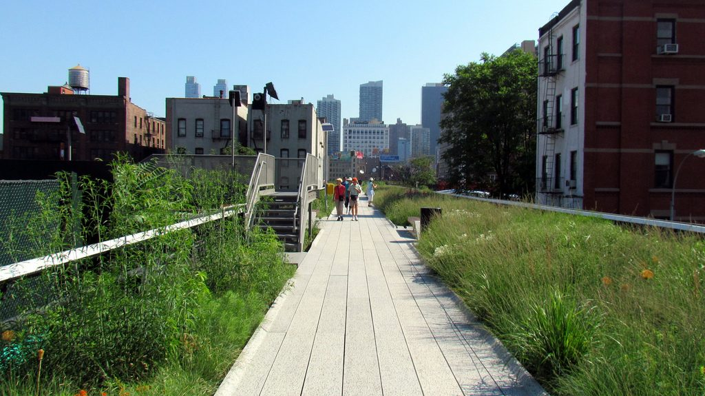 Clear skies and green flora in High Line Park in Manhattan, New York City
